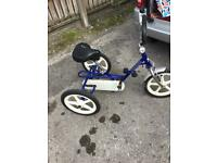 Theraplay terrier special needs trike