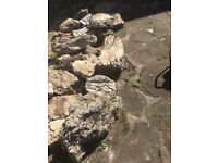 23 rockery stones for sale used various sizes