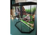Small fish tank plus filter & heater