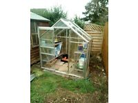 Glass greenhouse for sale (excluding shelves)