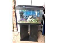 Fish tank and stand full setup
