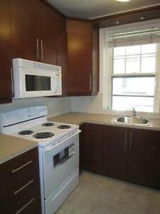 Large Renovated Apartment on Durocher near Pins - McGill Ghetto