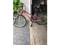 Apollo Bikes