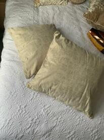 2 gold cushions