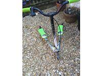 Green flicker scooter