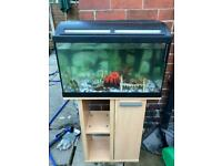 Fish tank with stand unit.