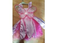 Princess dress and wings 6-8
