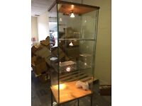 Lockable Glass Display Cabinet With Lights