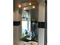 Bathroom Mirror and Overhead Light Unit