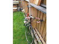 Giant Tcr Road Bike carbon fibre