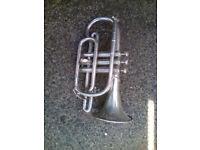 Brass/silver cornet