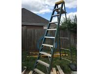 Stepladder fibreglass step ladder youngman