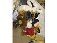 Harris's teddy bears