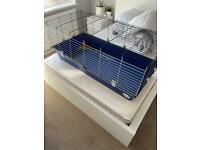 FREE - Rabbit/guinea pig large cage