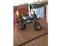 Road legal 125cc pitbike learner legal