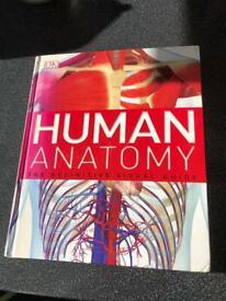 Human Anatomy Hard Back Book
