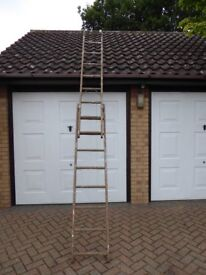 Combination Wooden Ladder