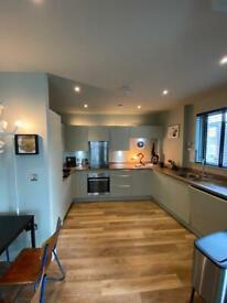 Professional Painter & Decorator in London short notice