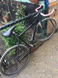 Bike Fixied Gear