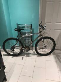 chrome frame mountian bike