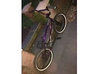 Harry main custom bmx... accepting offers