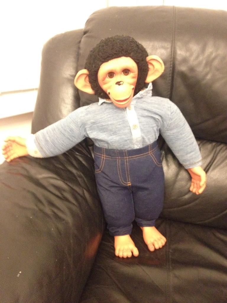Jacko monkey