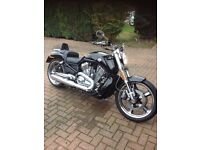 2013 Harley Davidson Vrod Muscle 1250cc One owner from new