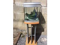 aqua one fish tank and stand including light and feeding hatch