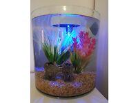 Marina 360 10l fish tank