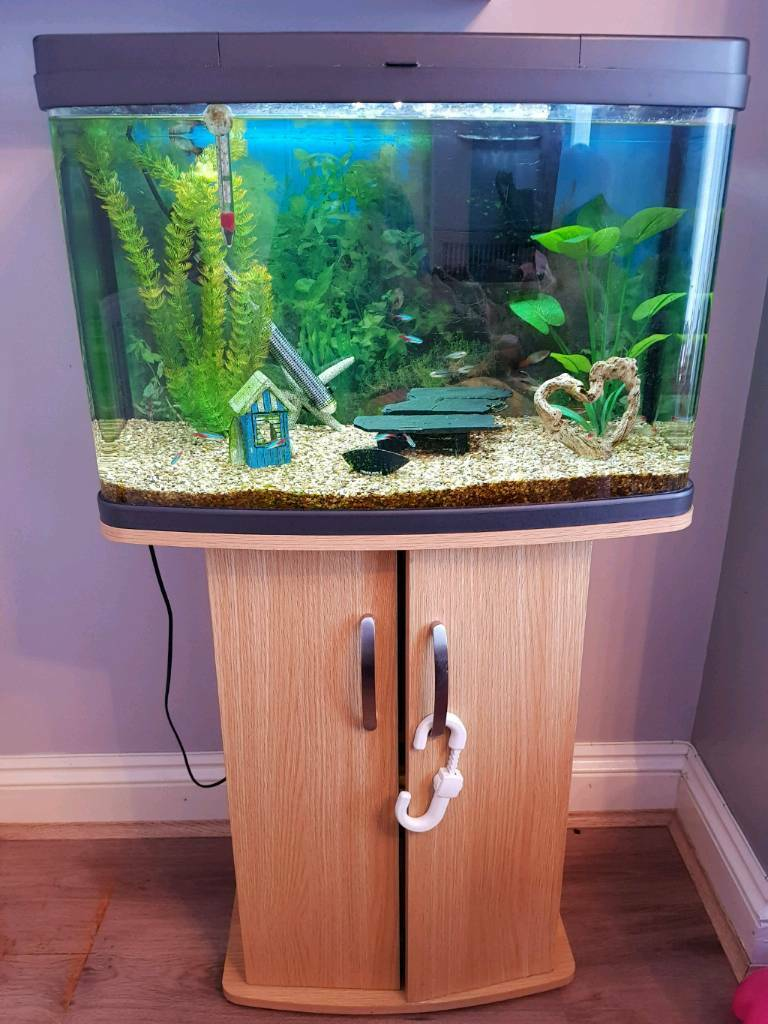 64 Litre Fish Tank Brand Is Love Fish With Stand In