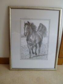 Framed Charcoal Horse Print