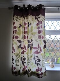 ALMOST NEW CURTAINS 45 WIDE X 54 LONG (INCHES)