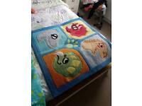 Boys / kids dinosaur rug and curtains