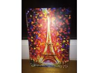 ipad mini paris case