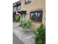 2 bed house in Essex looking for 2 bed house 30 mile radius Yeovil,Street,Glastonbury in somerset.