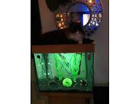 Jewel Fish Tank... Reduced....