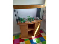 Juwel Vision 180 aquarium and cabinet with filter, lights, heater, pump etc