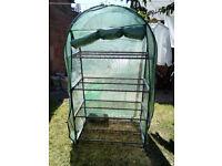 FREE Mini greenhouse, 4 shelves