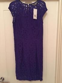 Brand New Dorothy Perkins Dress Size 8