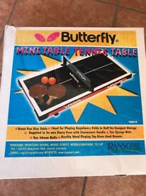 Mini Butterfly Table Tennis Table