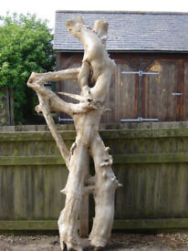 Wooden sculpture in the right hands