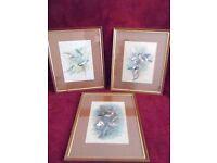 3 Brown Gold Framed Basil Ede Bird Prints ,Frame size 37 cm x 44 cm