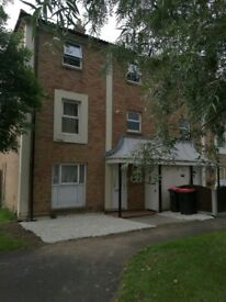 2 Rooms to rent. Redecorated house in Leegomery. Working non-smoking professionals. Near Hospital.