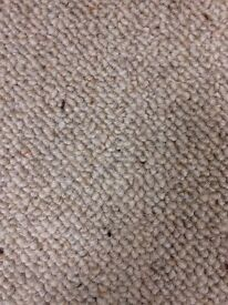 100% Wool Berber Carpet Brand New 2.60mx4.00m