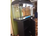 """23""""x16""""x12"""" fish tank with stand"""