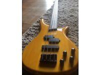 Bass Collection Bass Guitar