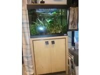 Fluval 90 liter tank with cabinet & extras