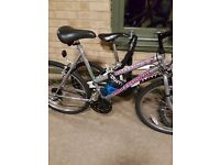 I have a ladies mountain bike for sale