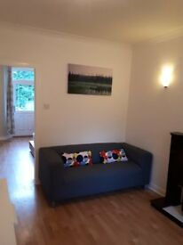 Bright one-bedroomed flat with garden for rent