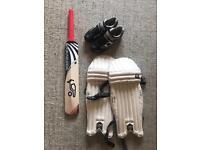 Cricket bat and pads.